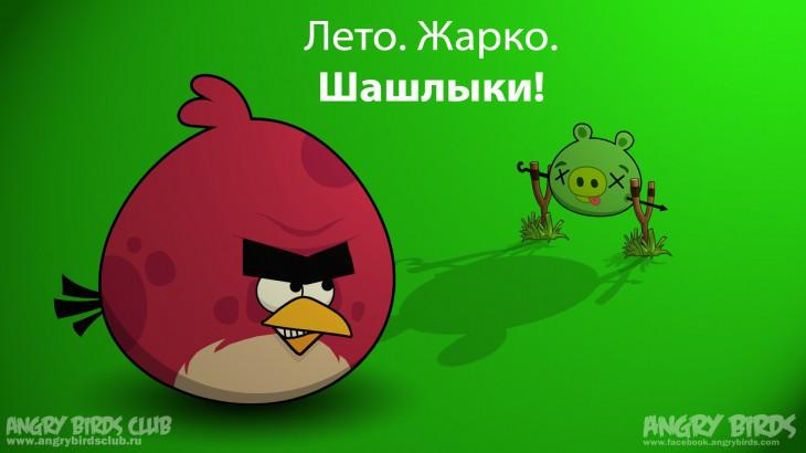 Обои Angry Birds Summer Pignic - Летняя Свиножарка 1920 × 1080