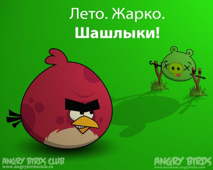 Обои Angry Birds Summer Pignic - Летняя Свиножарка 1280 × 1024