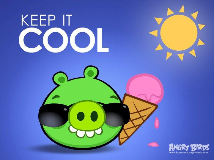 Летняя карточка Angry Birds с FaceBook