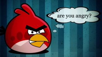 Обои Angry Birds Are You Angry?
