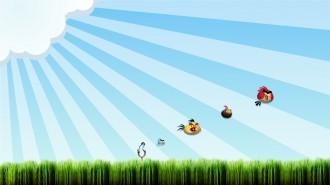 Обои Angry Birds - Выстрел из рогатки