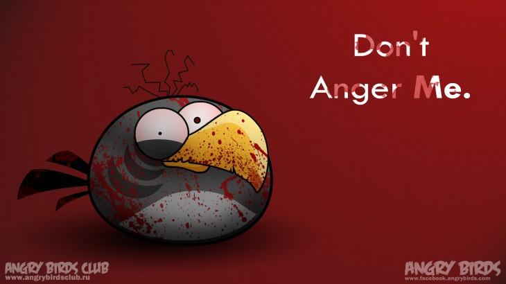 Обои Angry Birds - Не злите меня!