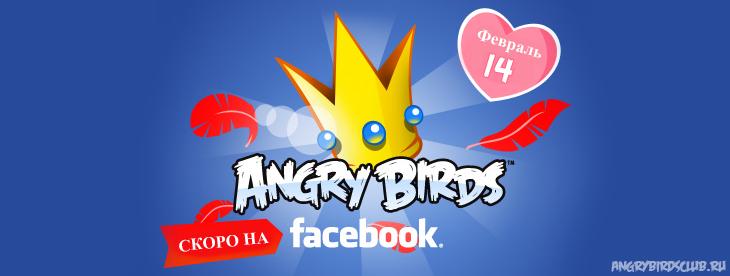 Готовится к выходу Angry Birds Facebook