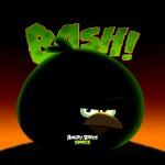 Angry Birds Space Большой Брат обои для iPad