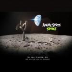 Angry Birds Space Лунная рогатка Обои для iPad