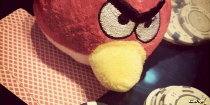 Angry Birds и Покер