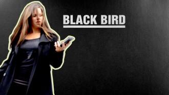 Постер Angry Birds Snatch - Чёрная Птичка