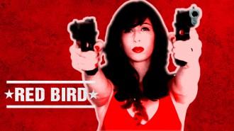 Постер Angry Birds Snatch - Красная Птичка