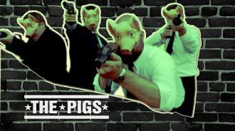 Постер Angry Birds Snatch - Свины