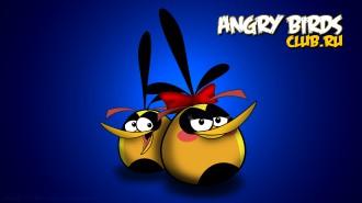 Angry Birds обои 1920x1080 от madfive5 - Птица-Шар Девочка