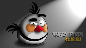 Angry Birds обои 1920x1080 от madfive5 - Новая Птица