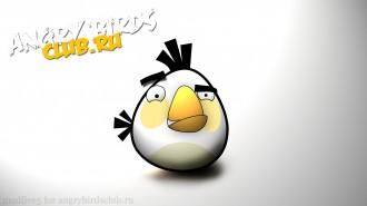 Angry Birds обои 1920x1080 от madfive5 - Белая Птица
