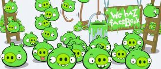 Bad Piggies Facebook - Ещё БОЛЬШЕ свиней!