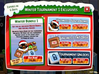 Зимний турнир: платные опции