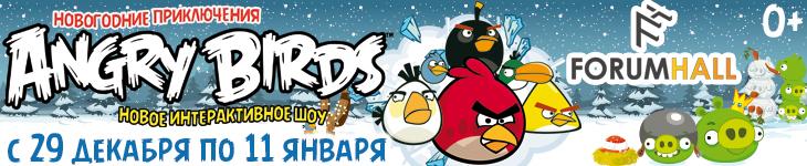 «Новогодние приключенияAngry Birds»